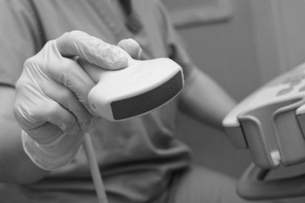 Gastroenterologist hand holding sonogram